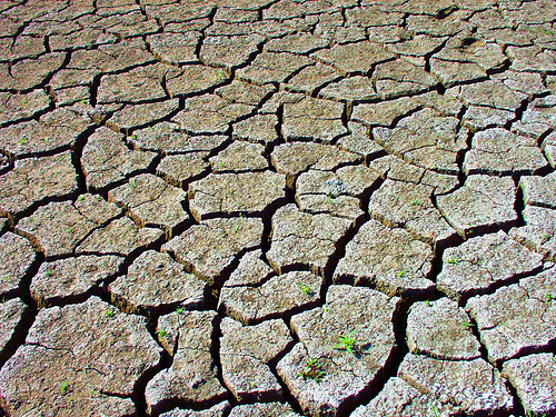 drought-texas