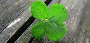 Lucky-four-leaf-clover-by-Umberto-Salvagnin-Creative-Commons